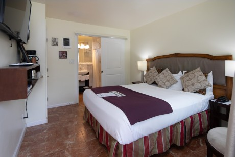 Vendange Carmel Inn & Suites: Accessible King Room